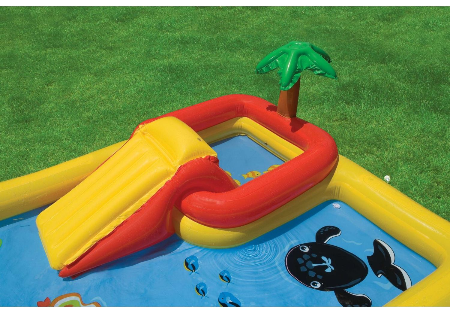 Play Center Inflable Ocean 493 Lt 19621/9 img 4